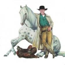 Roy Quaiser - Pferde Dressur